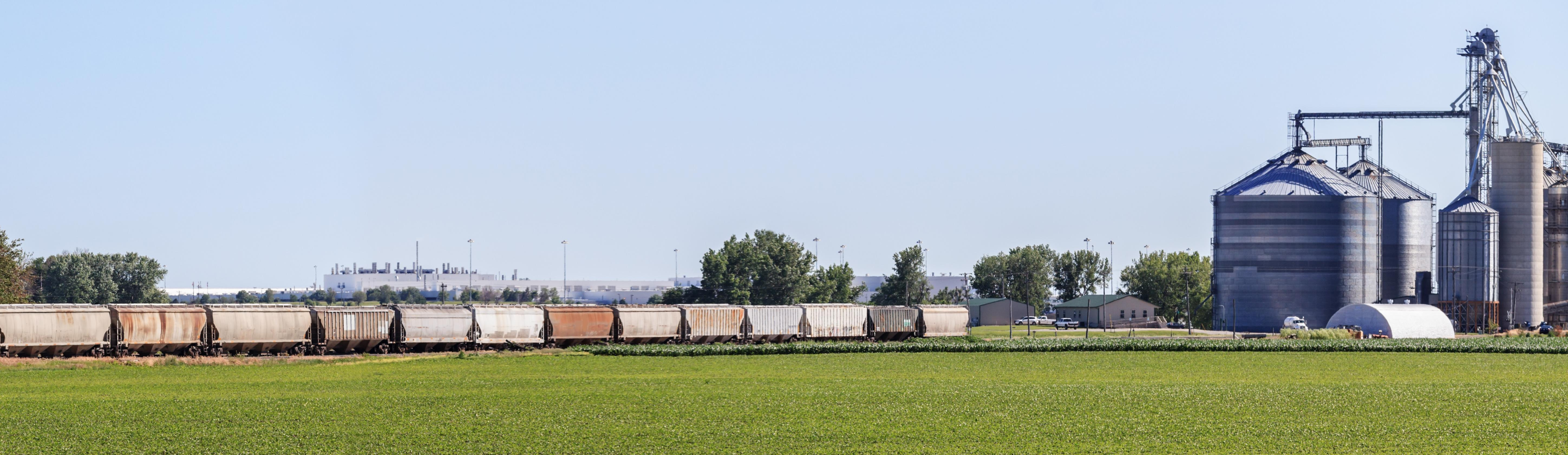 rail cars taking grain from an elevator